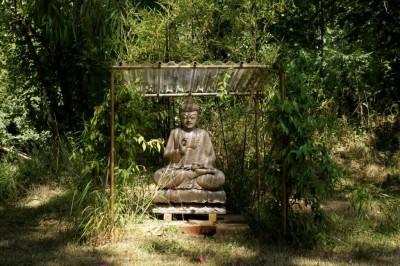 bouddha dans son écrin de jasmin